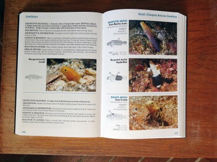 Page Spread of Baja to Panama book