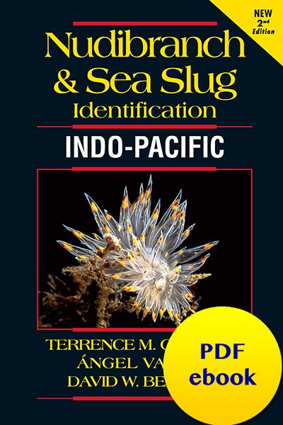 Nudibranch and Sea Slug Identification - Indo-Pacific 2nd Edition