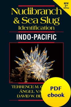 Nudibranch and Sea Slug Identification - Indo-Pacific 2nd Edition