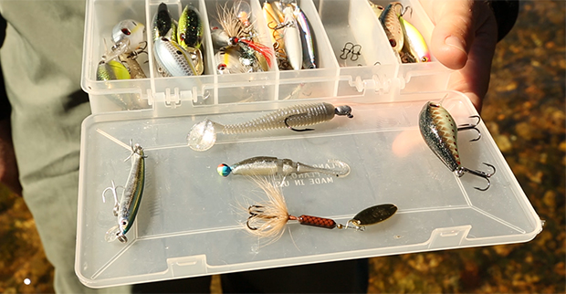 Best Bait or Lures to Use in Streams and Small Rivers