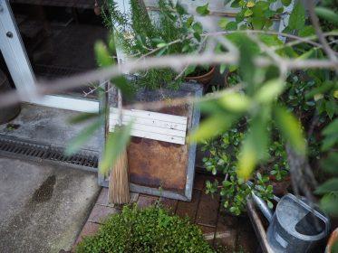 名東区のカフェaoiku cafeの紹介