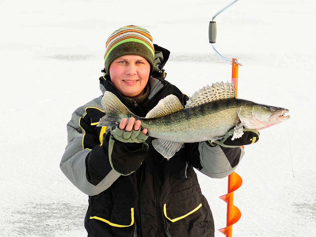 An angler kneeling on ice while holding a Walleye he just caught.