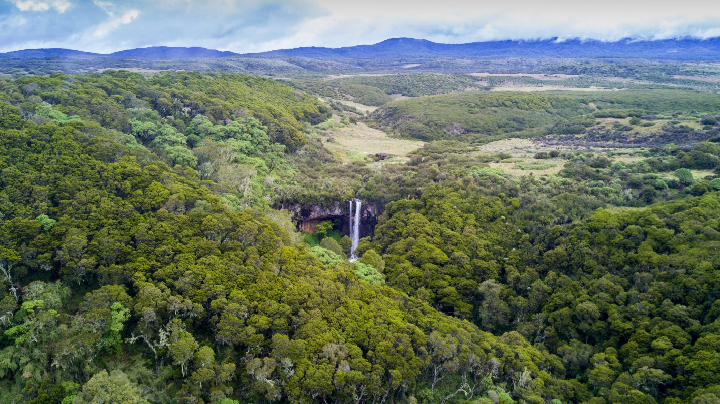 an aerial view of the forest and waterfall in Aberdare National Park, Kenya