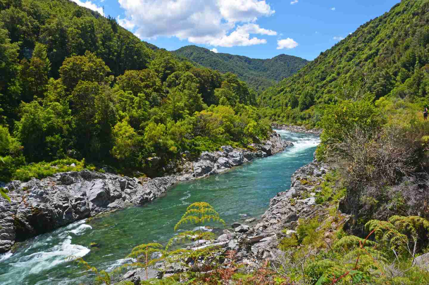 Clean Buller River, New Zealand