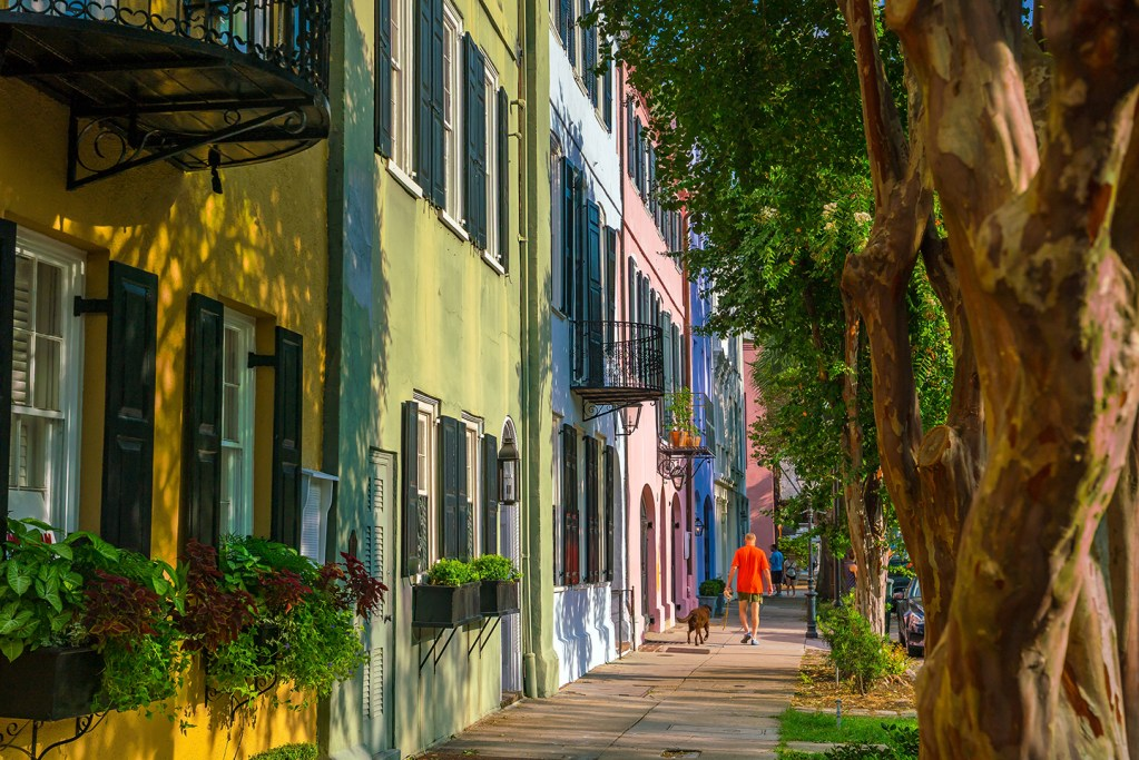 A row of pastel-colored houses in Charleston, SC, with trees on the right and a man in an orange shirt walking his dog in the distance.