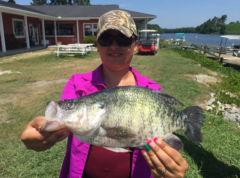 A woman holding a Crappie on land after fishing on Santee Cooper