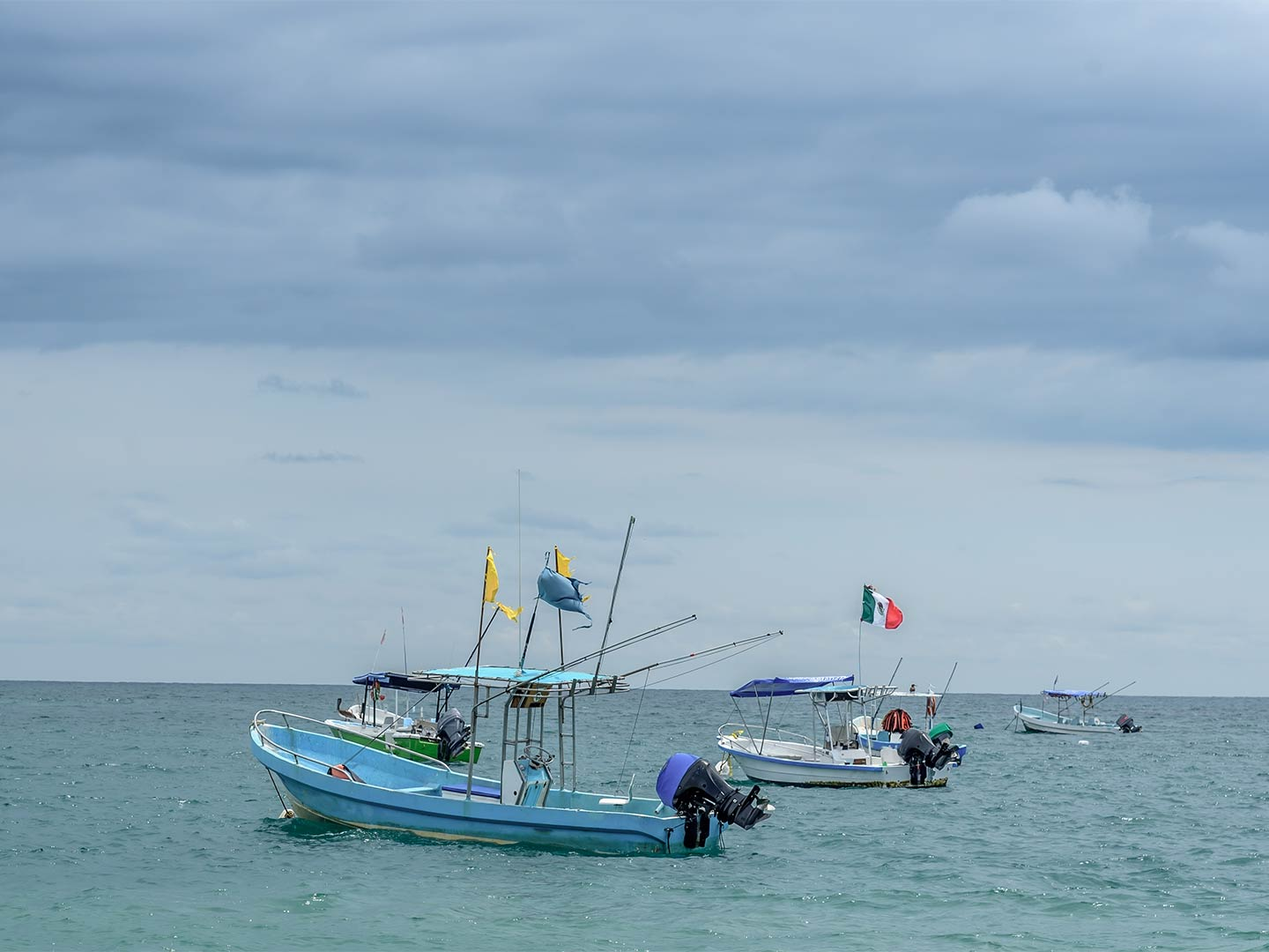 Four panga boats lie docked in the nearshore waters out of Ensenada