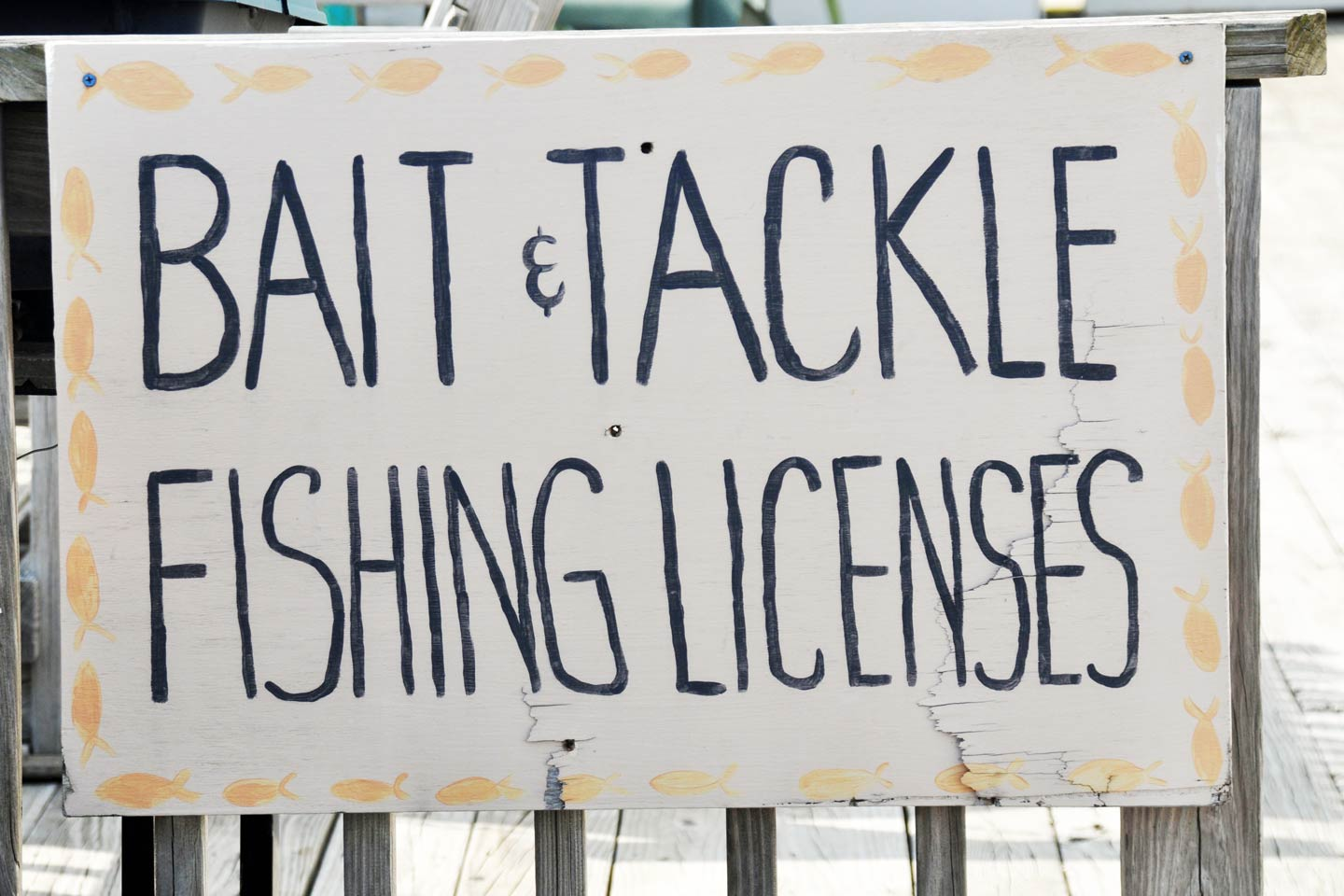 Signage signaling the sale of bait, tackle, and fishing licenses.