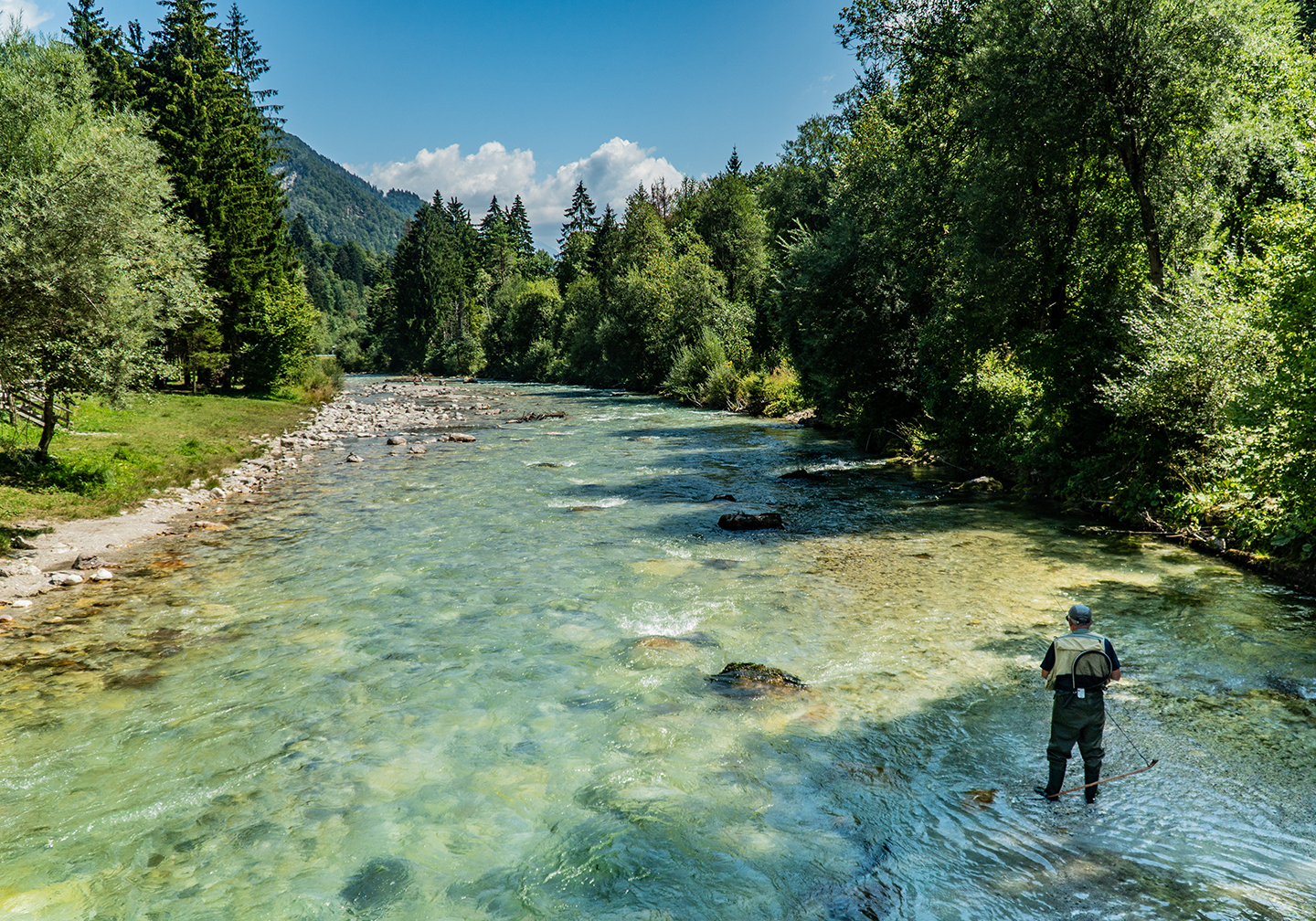 A clean shallow stream with trees either side, blue sky above, and a fly fisherman wading to the bottom right. This is a scene typical of fly fishing in Slovenia.