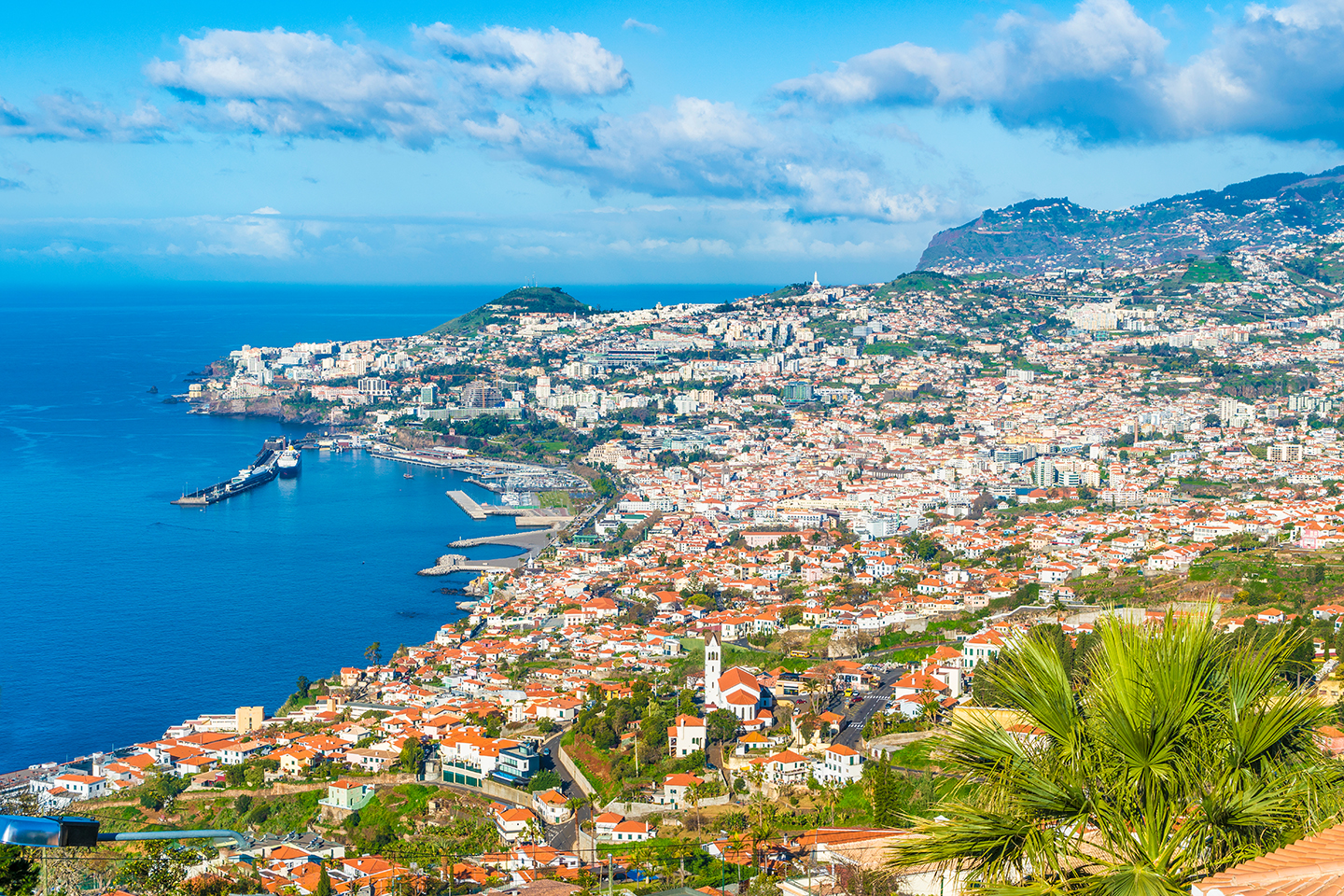 A view over Funchal, Madeira, with sea on the left.