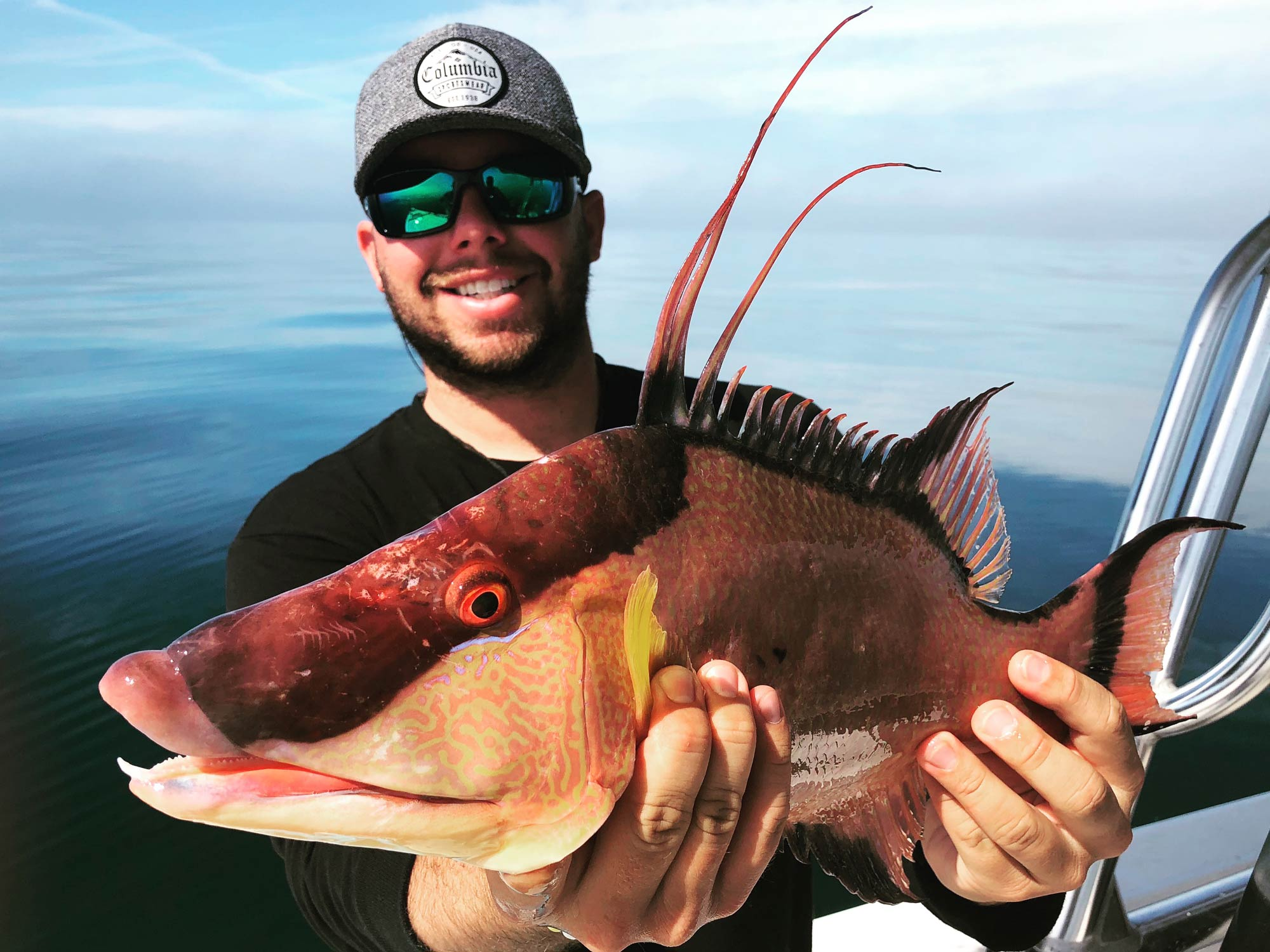 A smiling anglers holding a Hogfish on a boat