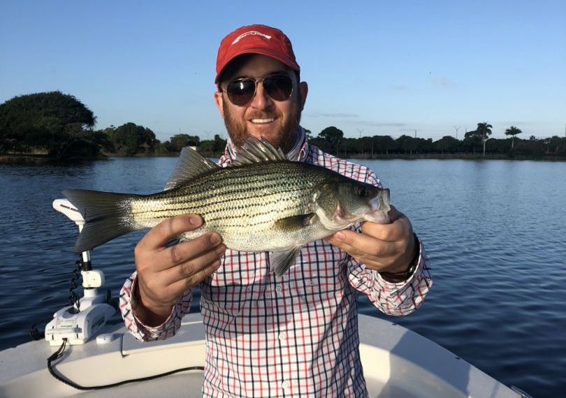 A man holding a Striped Bass on the river