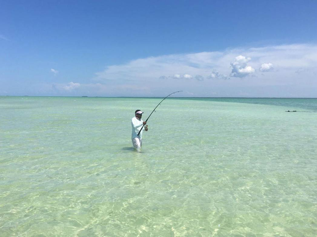 A man stands in shallow waters on a sunny day, holding a fishing rod