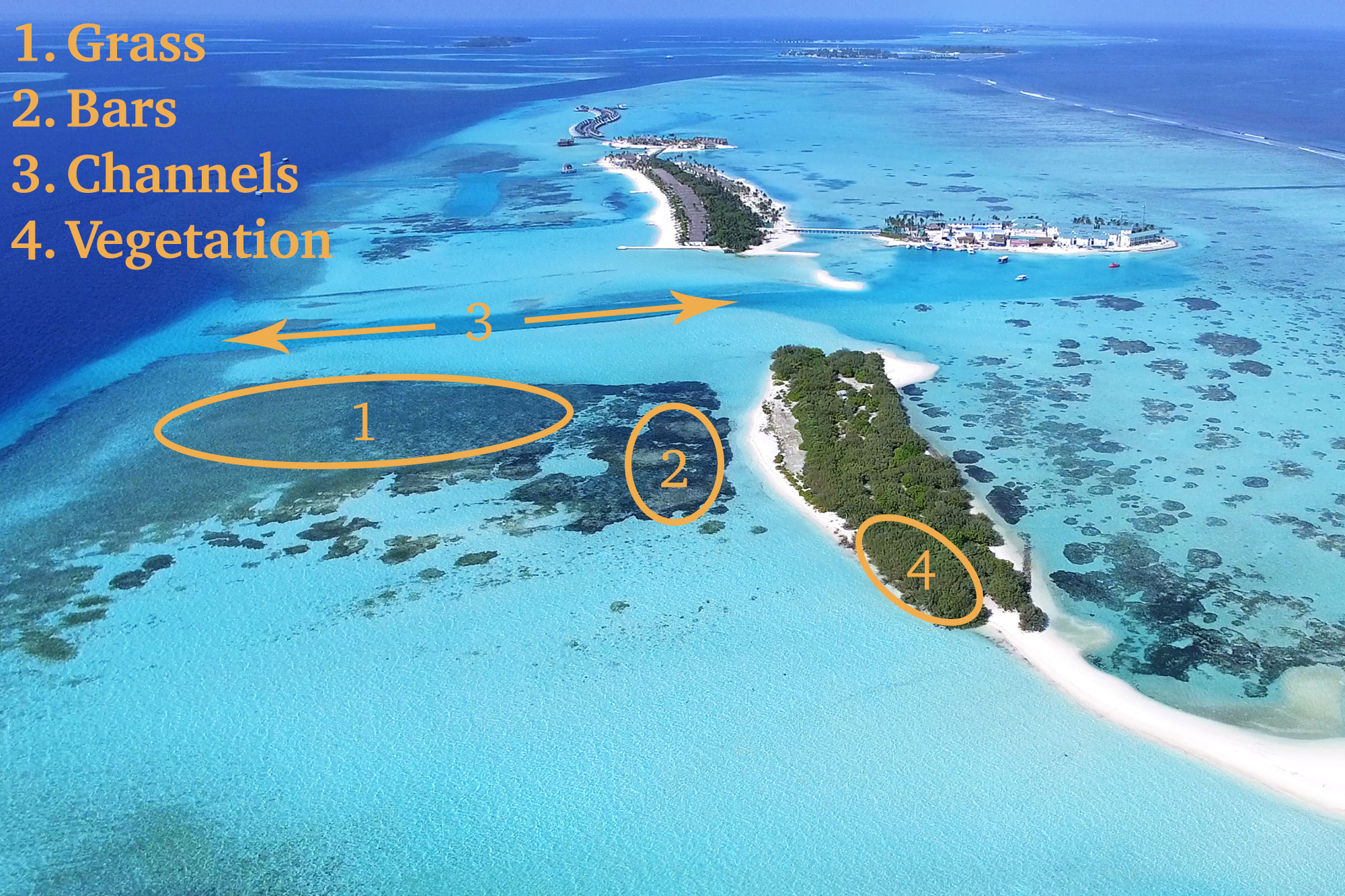An annotated picture of shallow water in the Maldives, showing the main areas of the fishery: grass, bars, channels, and vegetation
