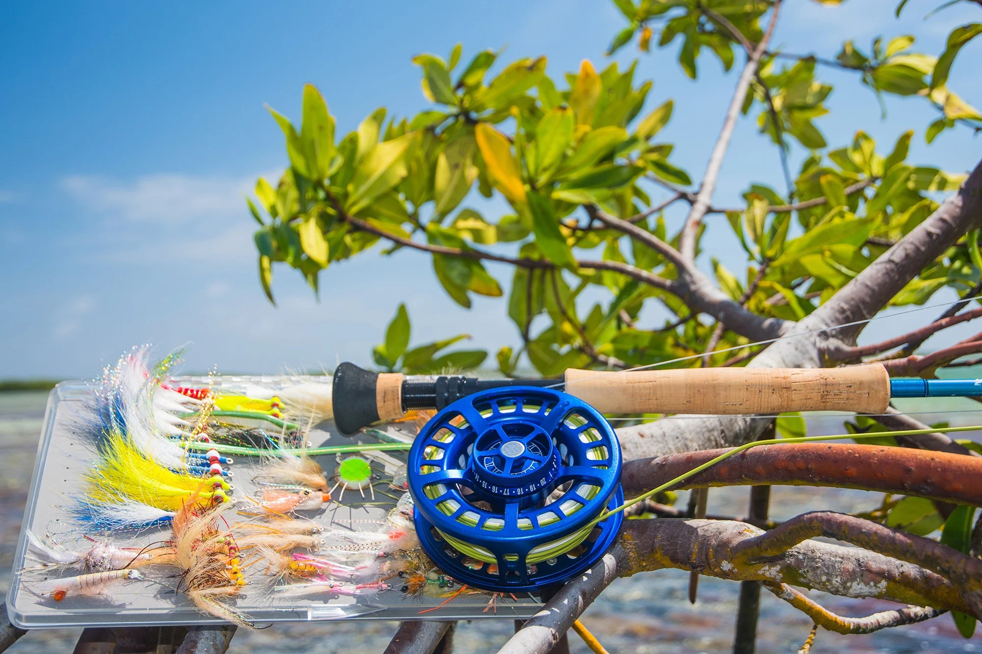 A saltwater fly fishing rod with a selection of flies resting on a mangrove