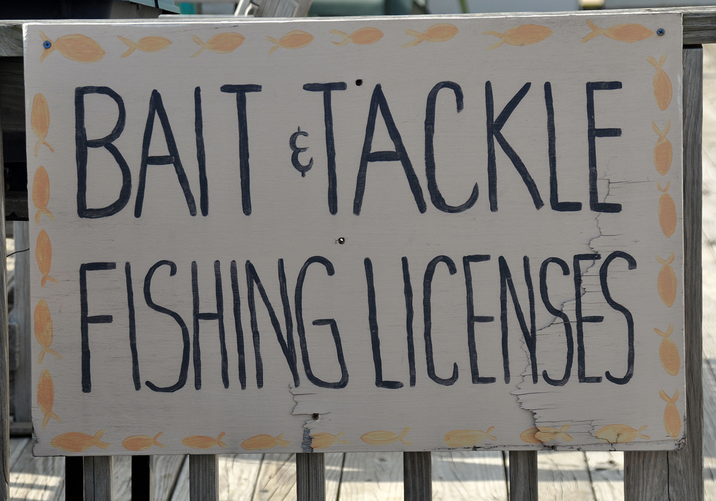 """A hand-painted sign reading """"bait & tackle, fishing licenses"""""""