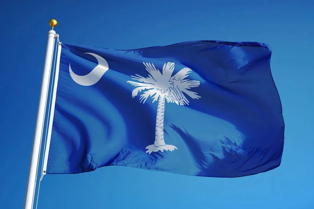 The flag of South Carolina in the wind