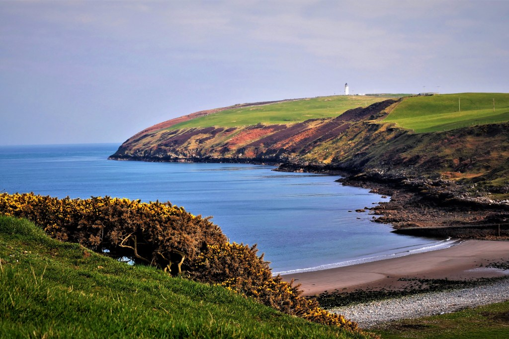 A remote section of coastline in Scotland, with green fields and rocky cliffs leading down to blue sea