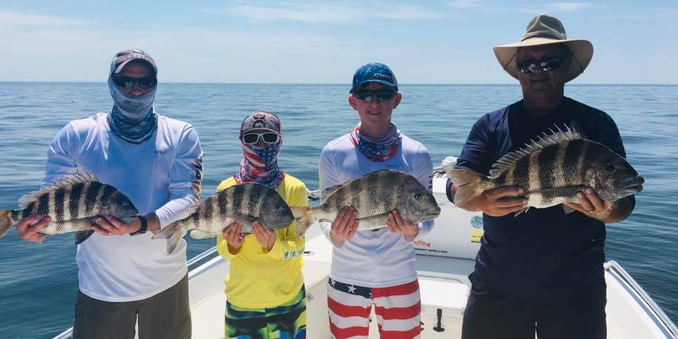 A family on a fishing trip in Tampa Bay each holding a Sheepshead fish