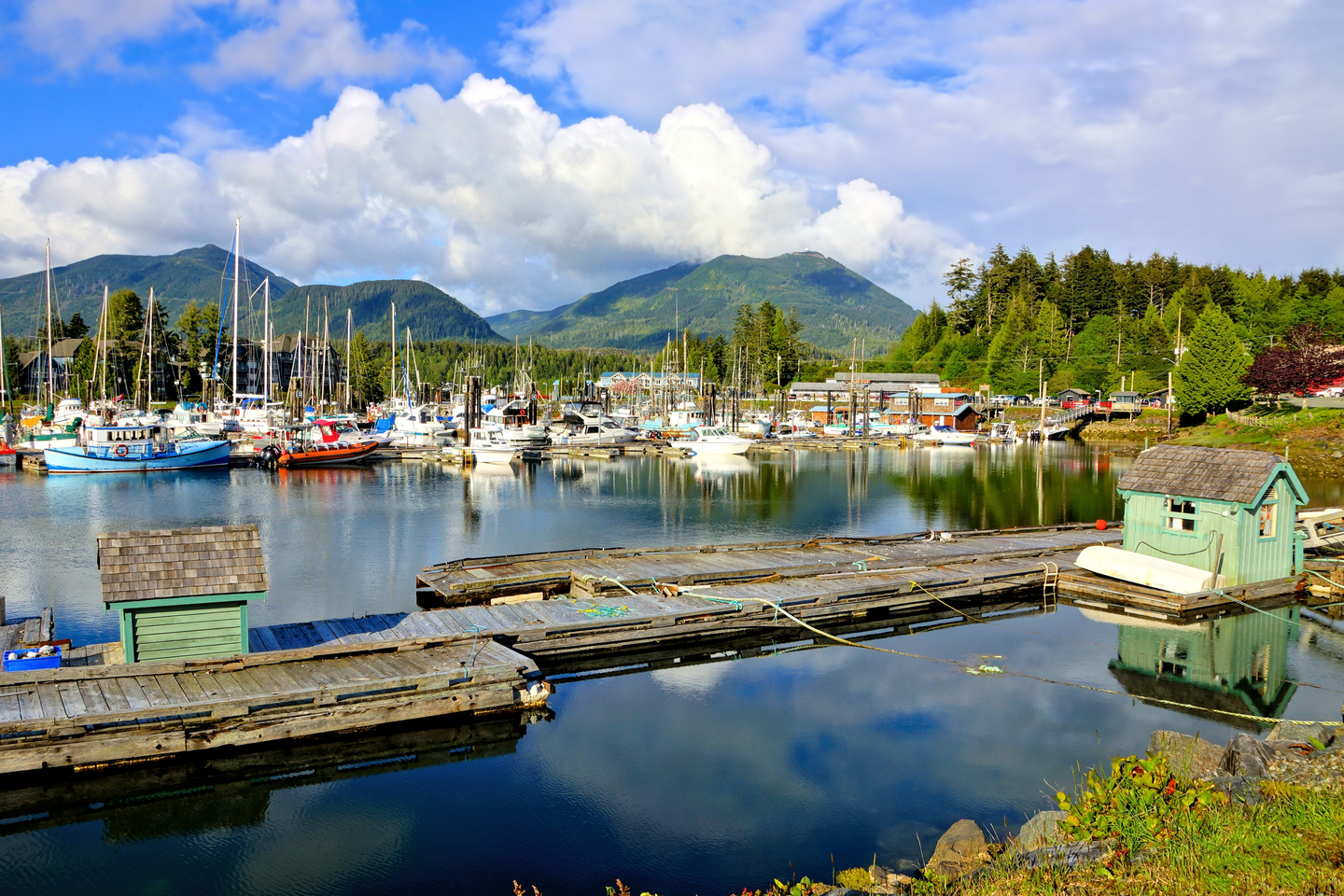 a look at the Ucluelet marina