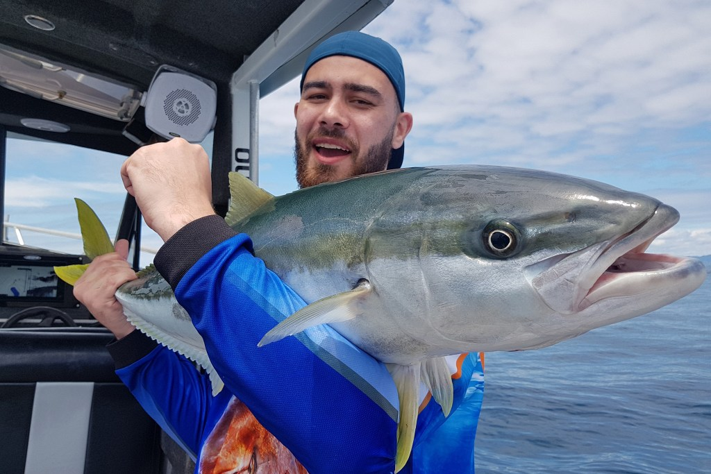 An angler holding a large Yellowtail Amberjack on a boat
