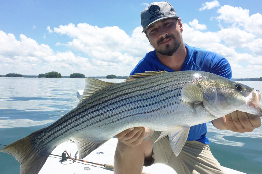 A man crouches on a boat with the water behind him holding a large Striped Bass