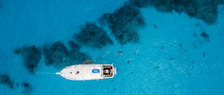 drone view of a fishing boat near game fish