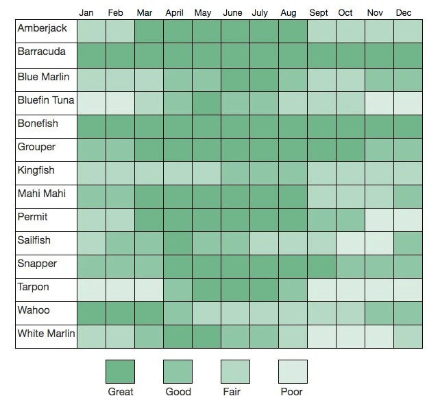 A Bahamas fishing calendar with top fish species per month