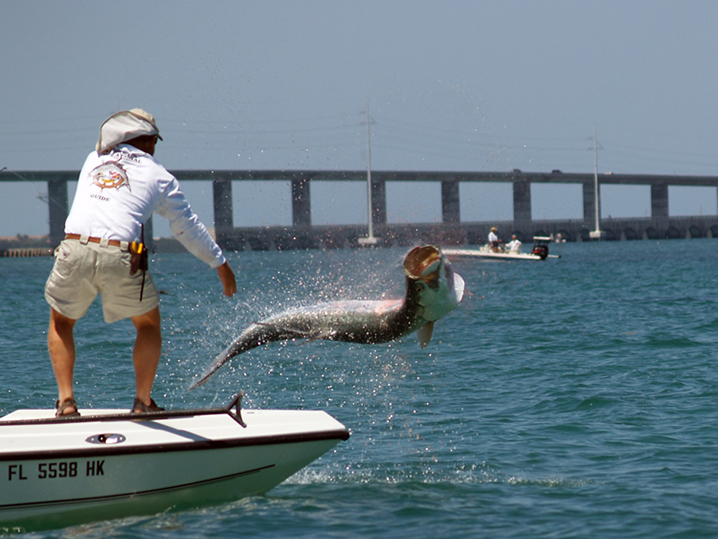 An angler fishing for Tarpon near the Bahia Honda Bridge.