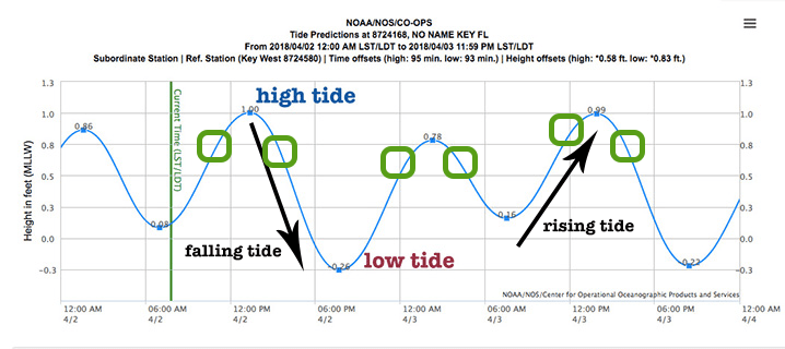 A diagram showing the best tide times for fishing in key west, with instructions on how to read a tide chart