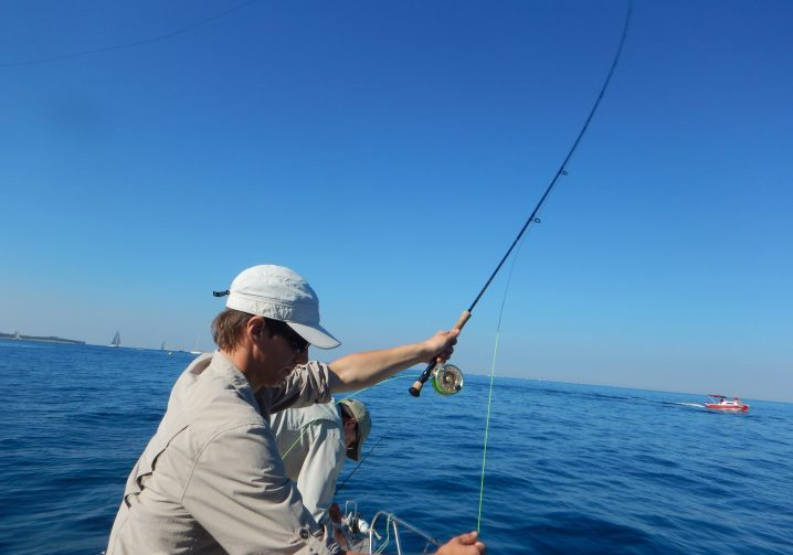 An angler in a white cap making a cast on a False Albacore fly fishing trip.