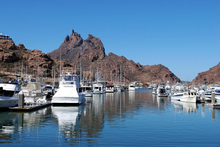 Как выбрать рыболовный чартер: переполненная лодочная гавань в Кабо Сан Лукас