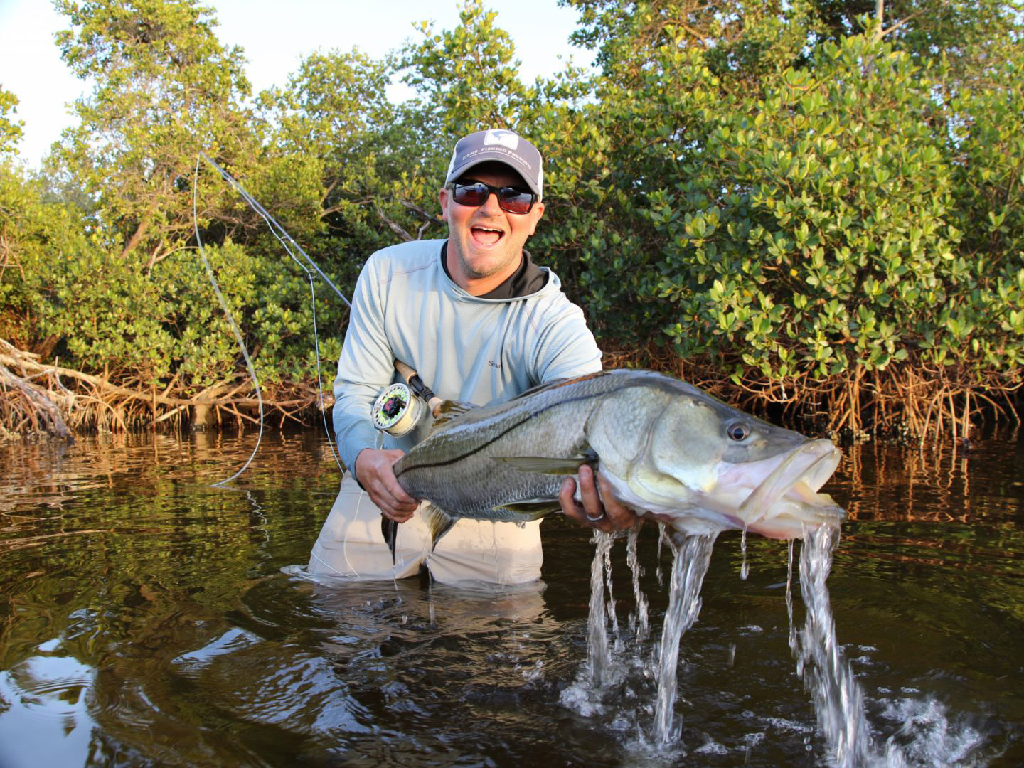 A man holding a Snook in the inshore waters of Boca Grande, Florida
