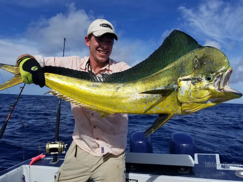 A man holding a Mahi Mahi on a boat