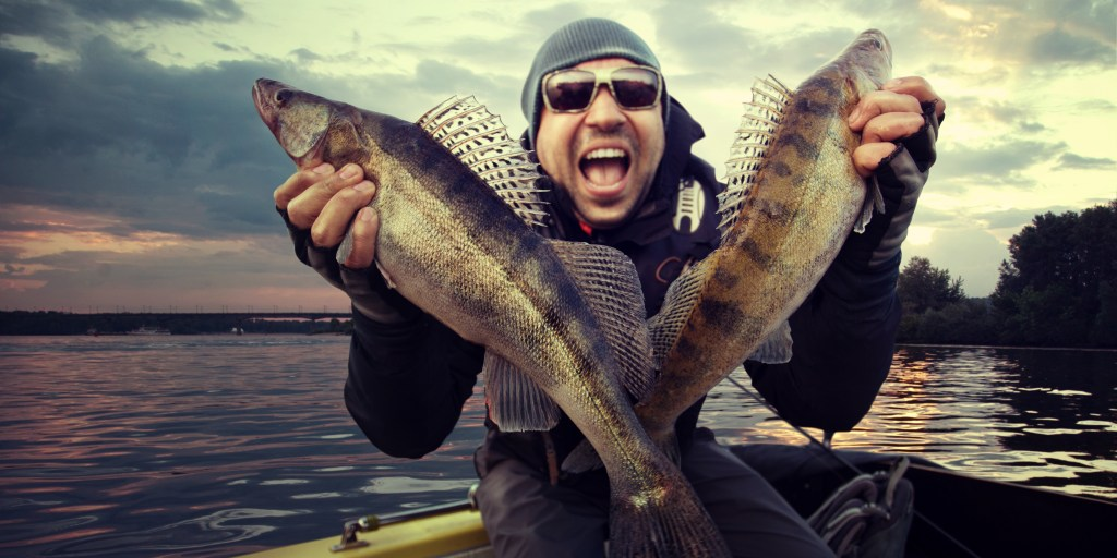 Happy man holding two big Walleye