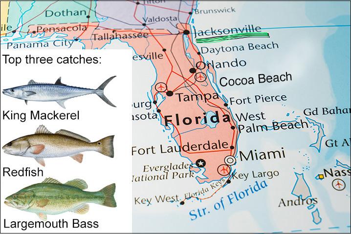 Florida freshwater fish Identification Chart /& saltwater fish id chart Set