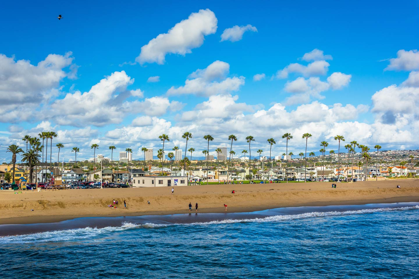 A view of the seaside homes along the Newport Beach's shore as seen from the Pacific Ocean.
