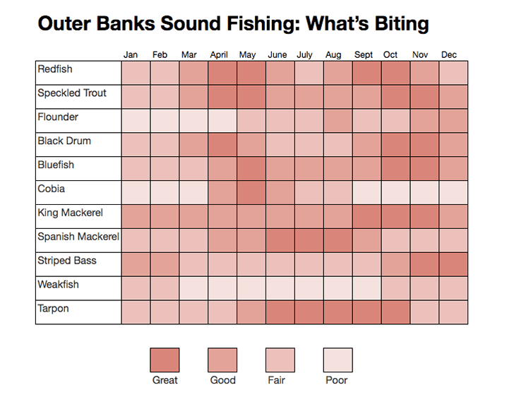 An Outer Banks sound fishing calendar, showing the best time of year to catch the top local fish species