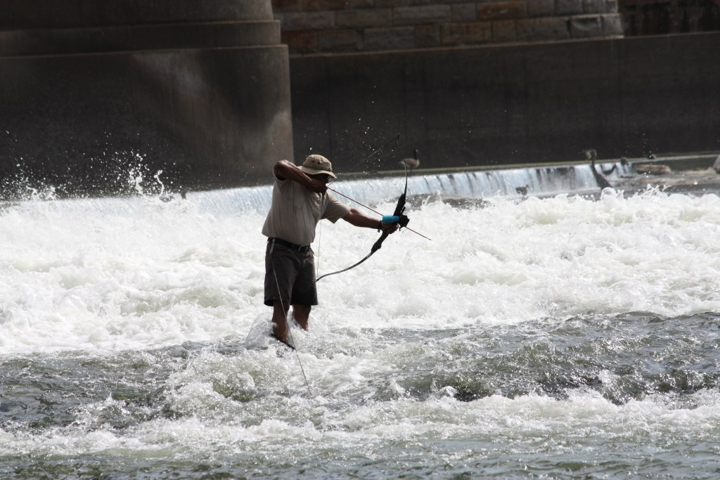 a wading bowfisher aiming with his recurve bow