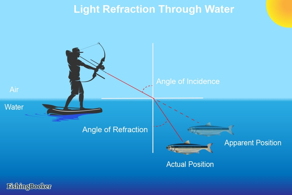an infographic showing light refraction through the water. a bowfisher aiming down at a fish underwater