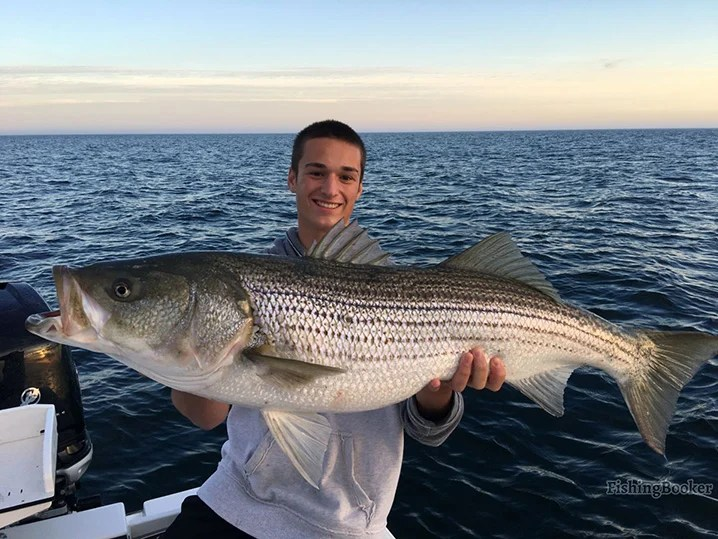 A smiling angler holding a massive Striped Bass which he caught on a fishing trip out of Narrangansett.