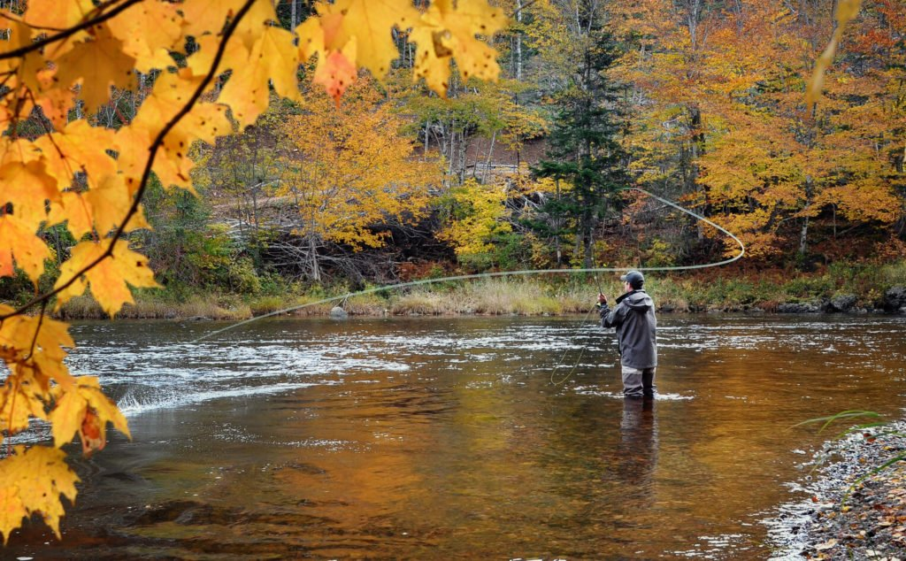an angler casting his fly rod on a river in the fall