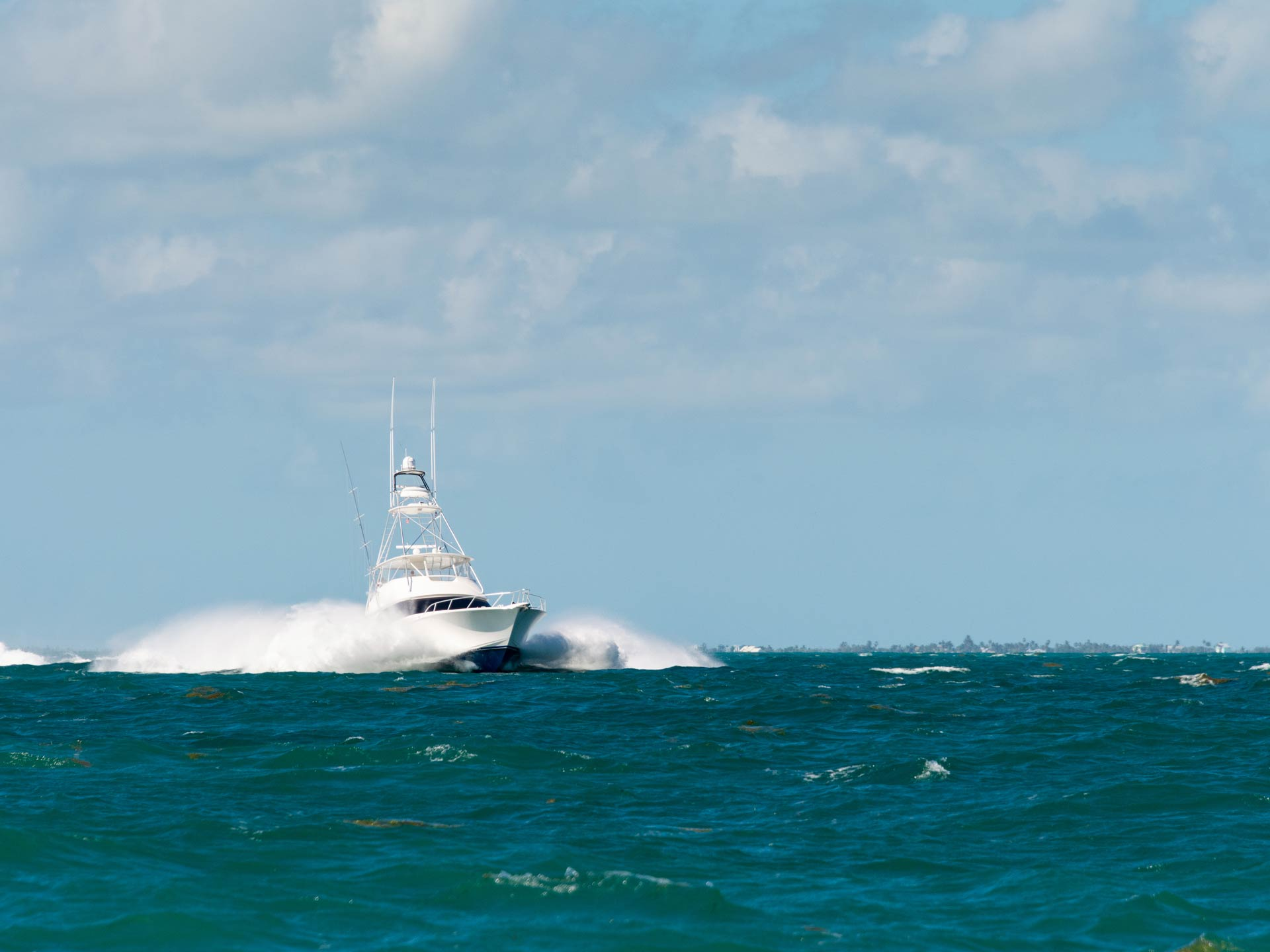 A charter boat speeding on the water