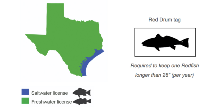 Planning to Buy a Texas Fishing License? Here's What You Need to Know