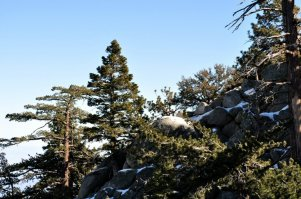 The ridge line at top of Palm Springs Aerial Tram.