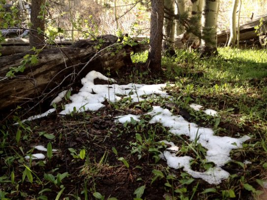 There was still snow in the shade.