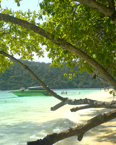 Phuket day fishing destinations