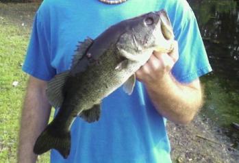 Jacksonville Fishing Spots - Fishing Jacksonville