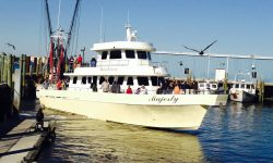 Majesty-Fishing-Charter