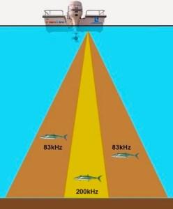 Fish-Finder-Cone-Angle